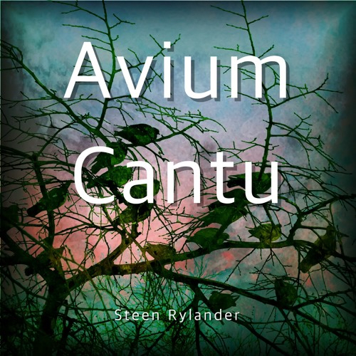 avium